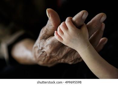 Grandmother hand holding Grandchild