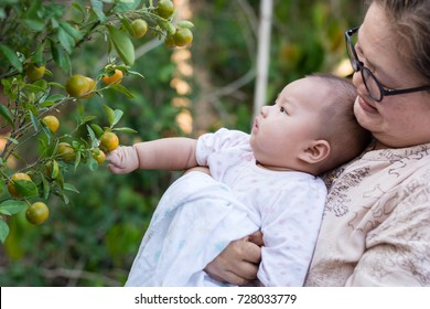 Grandmother holding adorable baby granddaughter in her arms