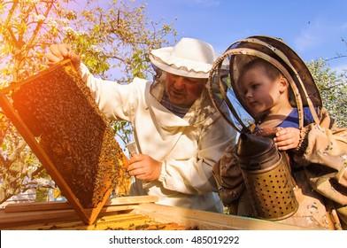 Grandpa beekeeper passes his experience little grandson.