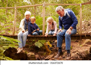 Grandparents sitting with grandkids on a bridge in a forest