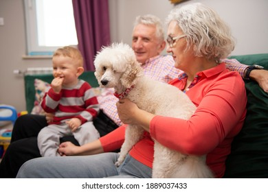 Grandparents with their young grandson and loyal poodle dog sitting together in the living room