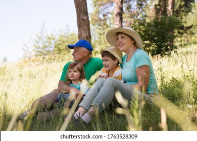 Grandparents with two grandchildren 				 in summer outdoors. Concept of friendly family. Staycations, hyper-local travel,  family outing, getaway,