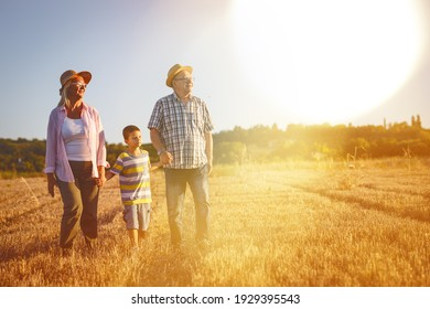 Grandparents walking with they grandson on meadow and joying in summer sunset.