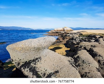 Granite coastal rocks on Sinas beach in Vilanova de Arousa