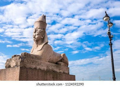 Granite Egyptian sphinx on background of blue sky. Ancient monument on Neva river in St.Petersburg, Russia
