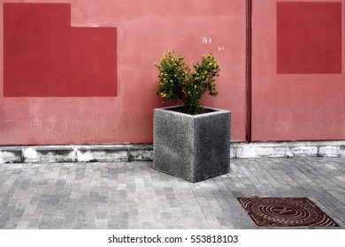 Granite flower bed on the background of a pink wall with more dark spots with accurate shapes. Russia, Moscow, September 2016.