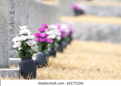 granite gravestones with commemorable flowers in seoul national cemetery taken during spring