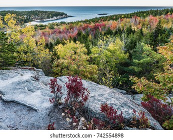 Granite Overlook on Beehive Trail with Red Fall Foliage, Acadia National Park