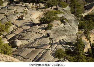 Granite rocks in Yosemite National Park.