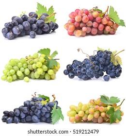 Grape fruit