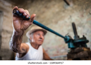 Grape harvest: old winemaker farmer working on a vintage wine press . Selective focus on the working hand. Farmer background