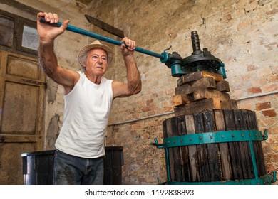 Grape harvest: old winemaker farmer working on a vintage wine press
