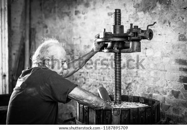 Récolte de raisins: viticulteur travaillant sur une presse à vin vintage. Image en noir et blanc