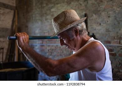 Grape harvest: portrait of old winemaker farmer working on a vintage wine press