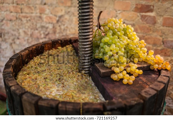 Grape harvest: Wine press with white must and bunch of grapes