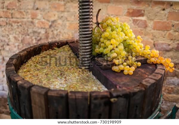 Récolte de raisins: Presse à vin avec moût blanc et grappe de raisins