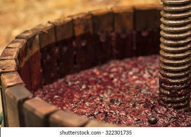 Grape harvest: Winepress with red must and helical screw