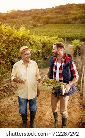 grape harvest-smiling father and son at family vineyard