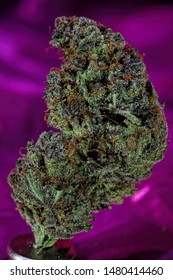 Grape Kool Aid Strain medicinal cannabis