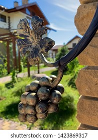 "Grape and leaf, public park of the hotel ""Aurora"", Russia"