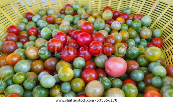 grape tomatoes closeup in basket , focus on center whit blurry background.