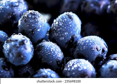 grape and water drops