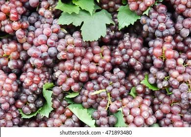 Grape wine background.