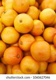grapefruit harvest. many grapefruits. grapefruit close up