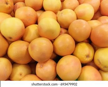 grapefruit harvest. many grapefruits. grapefruit close up.