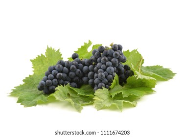 Grapes Blue Muscat,  bunch isolated on white background, with grape green leaves.