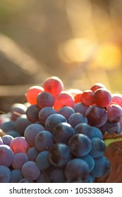 Grapes with blurred background