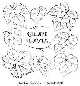 Grapes Leaves Black Contour Pictograms Isolated on White Background.