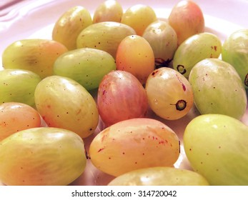Grapes on a plate background