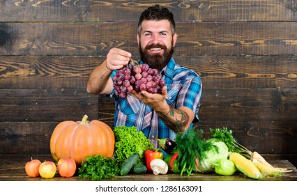 Grapes from own garden. Farming concept. Farmer proud of grapes harvest. Man hold grapes wooden background. Vegetables organic harvest. Farmer bearded guy with homegrown harvest on table hold grapes.