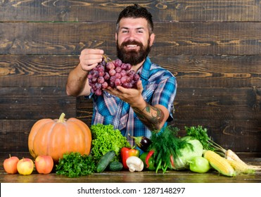 Grapes from own garden. Farming concept. Farmer bearded guy with homegrown harvest on table hold grapes. Farmer proud of grapes harvest. Man hold grapes wooden background. Vegetables organic harvest.