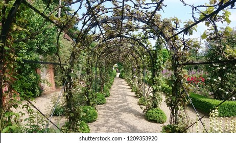 The grapevine arch in Loseley Park stately home, near Guildford, Surrey, UK