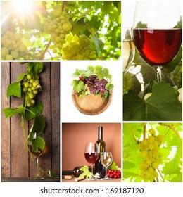 Grapevine collage
