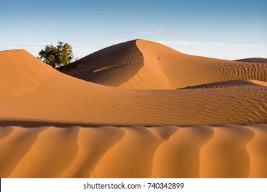 Graphical lines at Sunrise at the dunes (Sahara) at Mhamid, Morocco