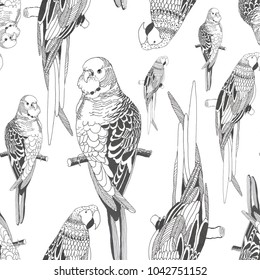 graphics parrots isolated on white background seamless pattern for fabrics, paper