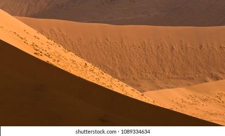 Graphism in Namibian desert