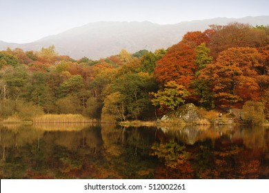 Grasmere Lake in the English Lake District in Autumn with the Trees reflected in the still dark water.