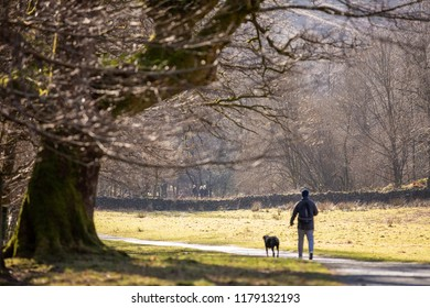 Grasmere/England - February 25th 2018: Grasmere dog walker