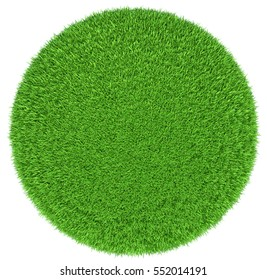 Grass arena isolated on white background. Top view. 3D illustration