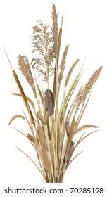 Grass Arrangement 1