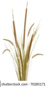 Grass Arrangement 2