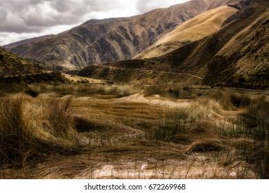 Grass blown by the wind, mountains in the back, Huancaya Peru