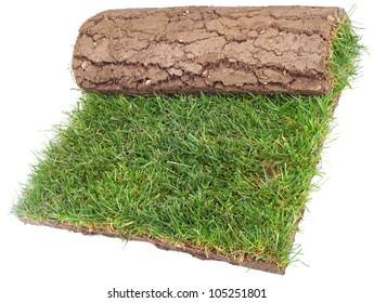 Grass Carpet Roll Isolated on White Background