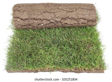 Grass Carpet Roll for Landscaping Isolated on White Background