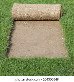 Grass Carpet Rolls Peeled from Sod