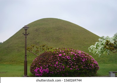 A grass covered hill marks an ancient grave site in South Korea. In the foreground is an old-fashioned lamp post, an azalea covered in pink flowers, and a tree with white flowers. The sky is overcast.